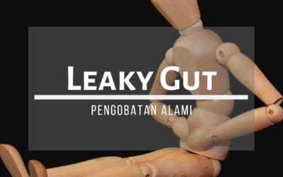 LEAKY GUT SYNDROME: PENANGANAN SECARA ALAMI