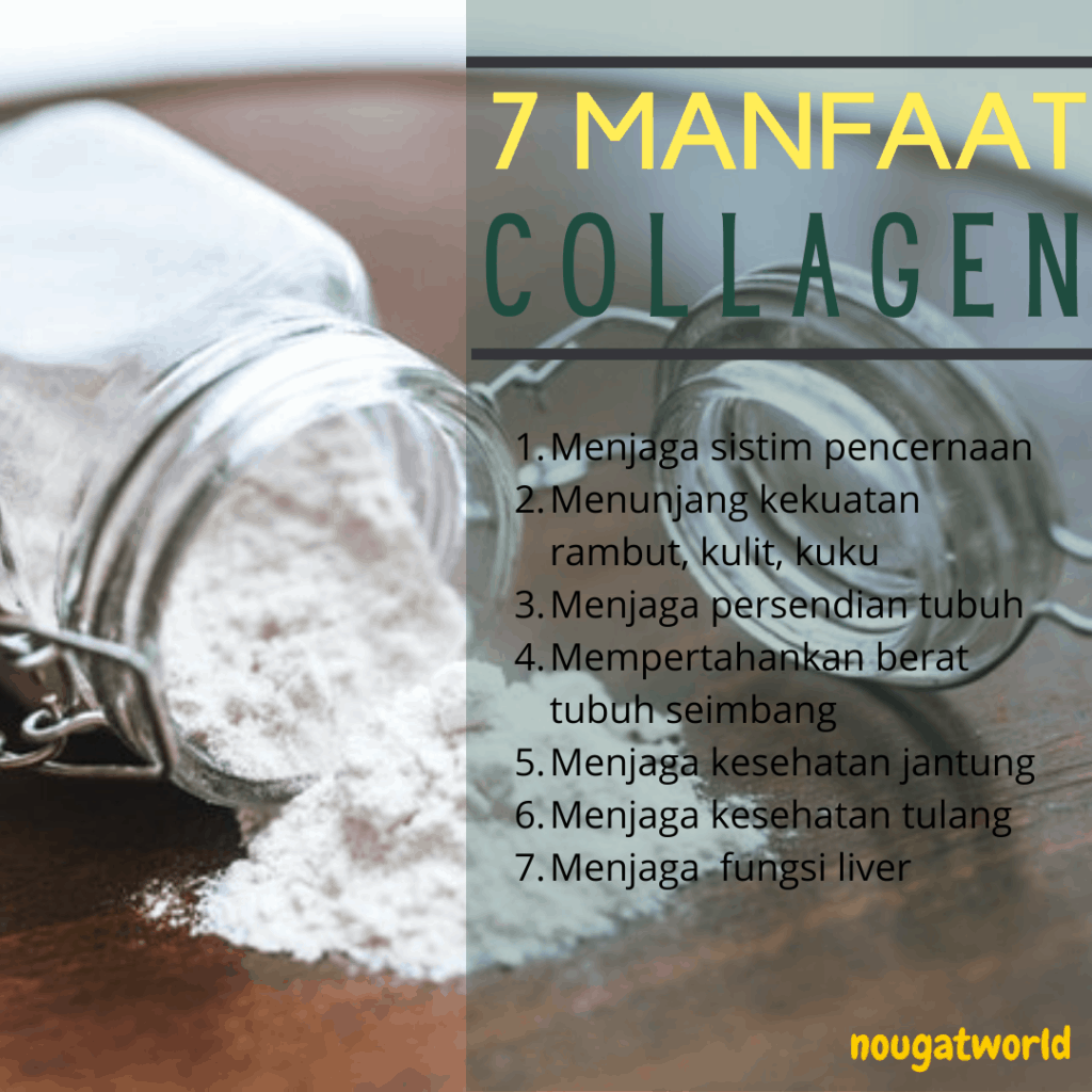 manfaat collagen